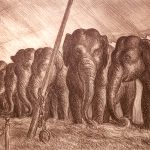 John Steuart Curry, Elephants, 1936, lithograph on paper, 17 1/4 x 21 1/4 inches, Collection of the Dubuque Museum of Art. Gift of Marijane Wallis in memory of J. Allen Wallis Jr. Curry